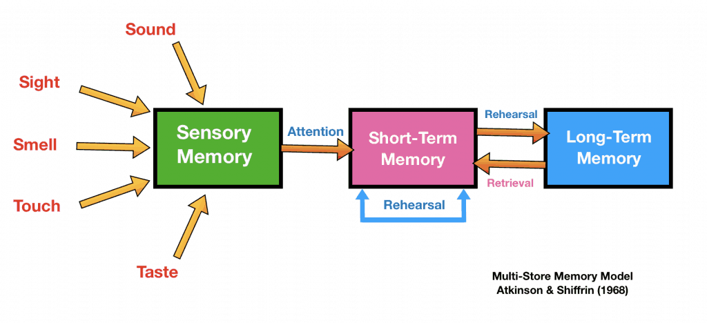 Aqa A Level Psychology Memory Revision