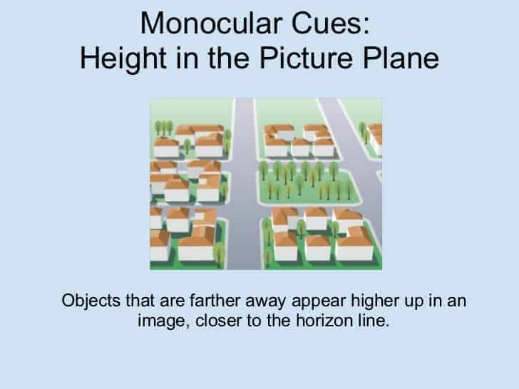 height in plane monocular cues